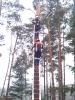 Baumfällarbeiten_39