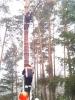 Baumfällarbeiten_40