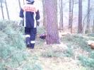 Baumfällarbeiten_41