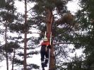 Baumfällarbeiten_5