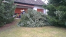 20121117_Motorsaegenumgang_10