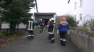 20121117_Motorsaegenumgang_1