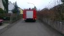 20121117_Motorsaegenumgang_3