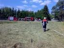 2009-06-14 Wiesenbrand